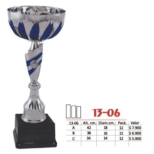 Copa 13-06
